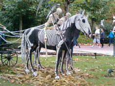 #horses #horse #halloween