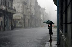 rain umbrella misty