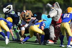 AroundIndy.com Blog: NFL Mascots v. Pee Wees and 90 more Indiana events...
