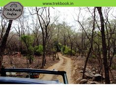 TrekBook.in: Jungle safari - Ranthambore National Park, Sawai Madhopur, Rajasthan