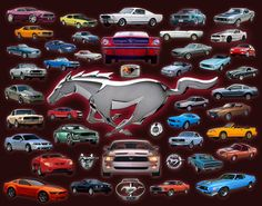 """Mustangs Collage"" by Florida Ford Mustang Mustang Girl, Mustang Cobra, Mustang Fastback, Roush Mustang, 1965 Mustang, Mustang Logo, Mustang Dealership, Dodge, Automobile"