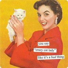 cat lady =^..^= (^..^)