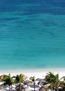 Would love to be sitting on this beach drinking a Blue Aruba...
