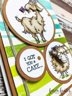 Small Goat, Team Page, New Catalogue, Animal Cards, Cute Images, Pretty And Cute, Cool Cards, I Fall In Love, Goats