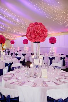 Planet Flowers/ Dundas Castle / Rankine Photography - Tall cylinders with oversized puff ball of Hot Pink Hydrangea