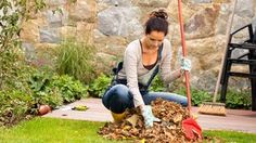 5 Lawn Care Tips to Keep Your Yard Healthy This Fall: keligoodfellas. Lawn Care Tips, How To Do Nails, Vegetable Garden, Wedding Cards, Outdoor Power Equipment, House Design, Beautiful, Healthy, Garden Ideas