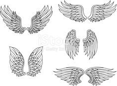 Heraldic wings set isolated on white background for design
