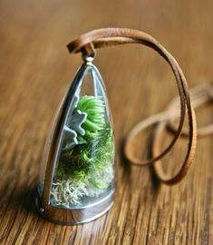 OOAK dome shaped terrarium locket with succulent necklace by Flower ...