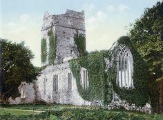 Ирландия в 1890-х: красоты Изумрудного острова в ярких открытках.  Аббатство Макросс, национальный парк Килларни в графстве Керри