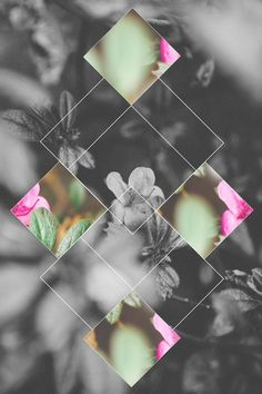 photoshop and want to create something different // graphic flowers Cute Backgrounds, Cute Wallpapers, Wallpaper Backgrounds, Iphone Wallpapers, Floral Wallpapers, Geometric Wallpaper, Trendy Wallpaper, Geometric Background, Nature Wallpaper