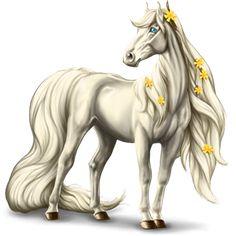 2800+ gp, Riding Horse KWPN Liver chestnut #37501942 - Howrse