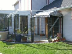 Like night and day, the cattery more than quadrupled in size by reconfiguring the basic six kennel panels.