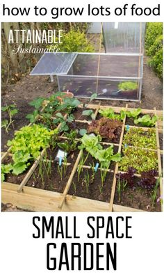 Small Space Vegetable Gardening Ideas small vegetable garden idea Small Garden Ideas Get The Most Bang For Your Buck