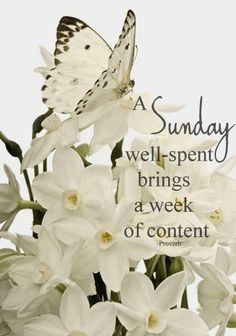 Sunday.....the day of rest.....