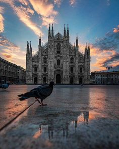 """""""Svegliarsi all'alba per vedere Piazza Duomo vuota e silenziosa è un sacrificio sempre ben ripagato."""" Perfettamente d'accordo #milanodavedere  : Massimiliano Donghi Milano da Vedere"""