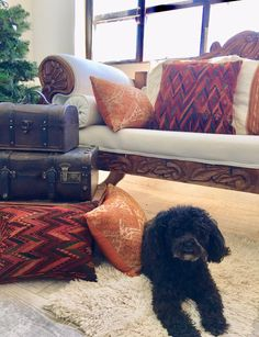 The Christmas tree is undecorated, but at least I have my fall pillows😂 Fall Pillows, Aztec Pillows, Colorful Pillows, Modern Bohemian, Bohemian Decor, Suitcase Decor, Guatemalan Textiles, Handmade Cushions, Hacienda Style