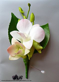 orchid-buttonhole by Blossom Wedding Flowers, via Flickr