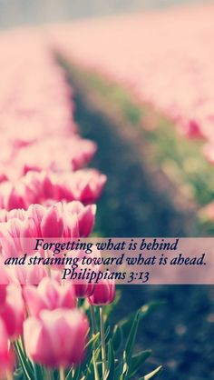 """Philippians 3:13 Send someone """"We Travel Together"""" as a special blessing of encouragement.  wetraveltogether.weebly.com"""