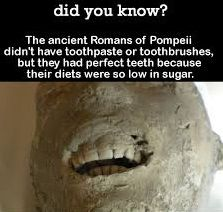 The ancient Romans of Pompeii didn't have toothpaste or toothbrushes, but they had perfect teeth because their diets were so low in sugar. Wtf Fun Facts, Funny Facts, Funny Memes, Crazy Facts, Random Facts, Random Stuff, Random Things, The More You Know, Good To Know