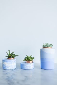 I'm a huge fan of the concrete and cement planter trend that's been popping up on DIY blogs for a while now—but while painting the dull gray surface of standard concrete works, I knew there had to be a cooler way of coloring these little plant homes