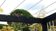 Image result for DIY patio pergola with garden wire