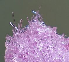 Grow Crystals in Your Fridge in Just a Few Hours: These epsom salt crystal needles form within a matter of hours. You can grow clear crystals or color them with food coloring.i migtht do this if there is ever a science fair. Science Experiments Kids, Science Projects, Projects For Kids, Craft Projects, Science Crafts, Epsom Salt Crystals, Diy Crystals, Sugar Crystals, Black Crystals