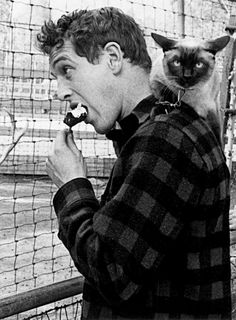 "thelittlefreakazoidthatcould:  "" Paul Newman with photographer Sanford Roth's cat, Louis XIV, 1956.  """