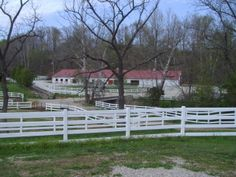 The white fencing surrounds our farm on the rolling hills. White Fence, Horse Ranch, Horse Farms, Fencing, Kentucky, Management, Horses, Plants, Fences