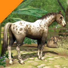 Real Horses - Grullo Blanket Leopard Appaloosa (Kahlua) by LittleV - The Exchange - Community - The Sims 3
