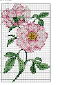 Cross Stitch Gallery, 123 Cross Stitch, Cross Stitch Pictures, Cross Stitch Cards, Cross Stitch Flowers, Counted Cross Stitch Patterns, Cross Stitching, Cross Stitch Embroidery, Embroidery Flowers Pattern