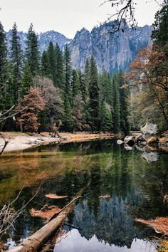Yosemite National Park (California) by Snow Wolf / 500px