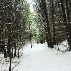 My Photos, Snow, Outdoor, Outdoors, Outdoor Games, Outdoor Life, Human Eye