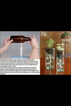 DIY glass cutting, self watering plant pot.