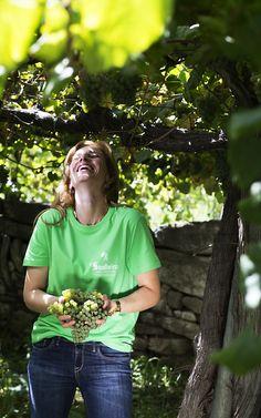 Naturalmente… feliz! Naturally ... happy! Maria João Cerdeira - a grande responsável pela viticultura do Soalheiro em modo de produção biológica... © Anabela Trindade #Alvarinho #vindimas2016 #SoalheiroTeam