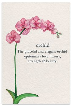 Orchids quotes , orchideenzitate , citations d'orchidées , … - Modern Spiritual Symbols, Buddhism Symbols, Buddhism Tattoo, Sanskrit Symbols, Spiritual Meaning, Flower Meanings, Plant Meanings, Tattoo Und Piercing, Symbols And Meanings