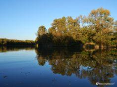 La foto è stata scattata a Limena (Padova) dove l'acqua del fiume è regolata da una diga.
