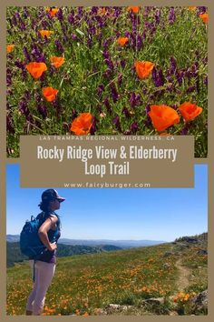Rocky Ridge View and Elderberry Loop Trail - fairyburger My Road Trip, Road Trip Adventure, California Camping, California Dreamin', Park Trails, Hiking Trails, Wilderness, Go Between, Allergy Medicine