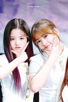 190421 Cheongdam Art Hall fan signing #izone #wonyoung #yujin Twice Photoshoot, Sakura Miyawaki, Yu Jin, Woo Young, Cute Korean Girl, Kim Min, First Girl, 3 In One, Pop Music