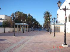 Ezzahra http://static.panoramio.com/photos/large/8787650.jpg