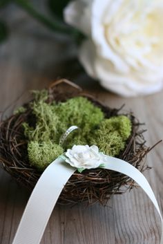 Complimenting the garden inspired theme, this should present our wedding rings quite nicely... Keywords: #weddings #jevelweddingplanning Follow Us: www.jevelweddingplanning.com  www.facebook.com/jevelweddingplanning/