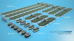 We offer a variety of sized algae raceways for cultivation. Algae ponds cultivation equipment for sale, algae biofuels, photo bioreactors for sale Aquaponics System, Hydroponics, Aquaculture Tanks, Engineering Firms, Civil Engineering, Agriculture Machine, Sea Plants, Pond Design, Portable Toilet
