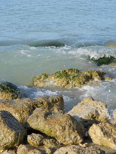 Naples Florida Taken by Jennifer Madden July2011