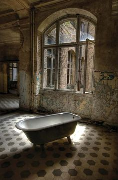 Beauty in Decay Romantic Tub by Alexander 3Passa Friedrich