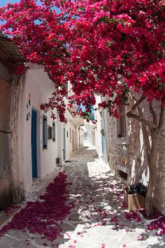 Греция, Наксос: Халки (Halki)