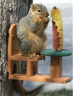 I don't really need more squirrels in my yard but this Table and Chair Squirrel Feeder is really cute!!
