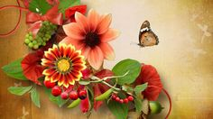 1920x1080px flower images for desktop background by Usher Fairy
