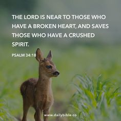 Psalm 34:18 The LORD is near to those who have a broken heart, and saves those who have a crushed spirit.