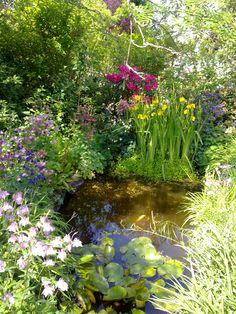 Sommer im Garten, da fehlt nur noch ein Glas Rotkäppchen