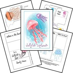 Jellyfish Animal Study & Lapbook