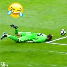 Funny Sports Videos, New Funny Videos, Funny Prank Videos, Cute Funny Baby Videos, Cute Funny Babies, Super Funny Videos, Funny Pranks, Funny Vidos, Stupid Funny Memes